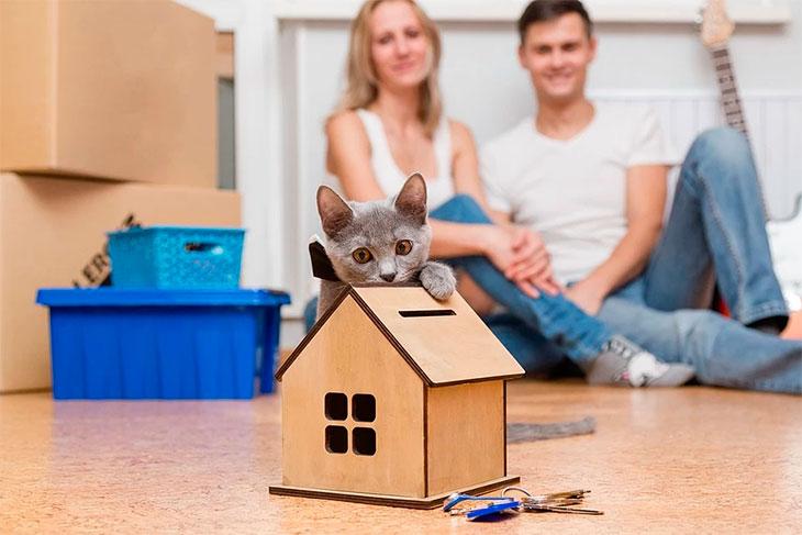 Что еще нужно знать про ипотеку?